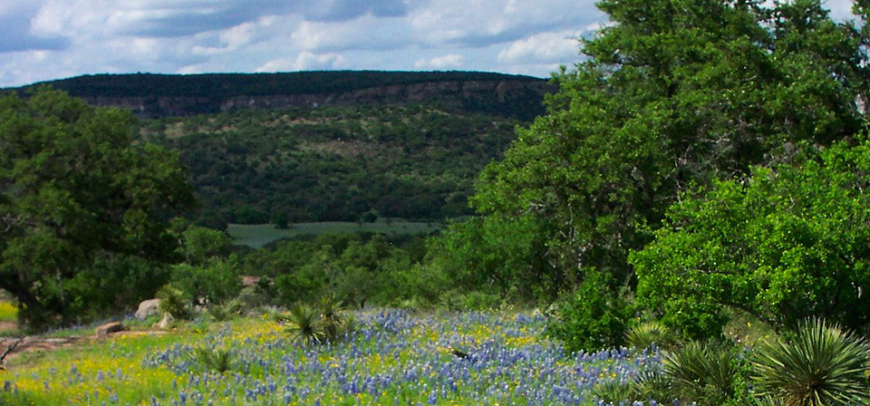 Explore the landscape around Shady Oaks